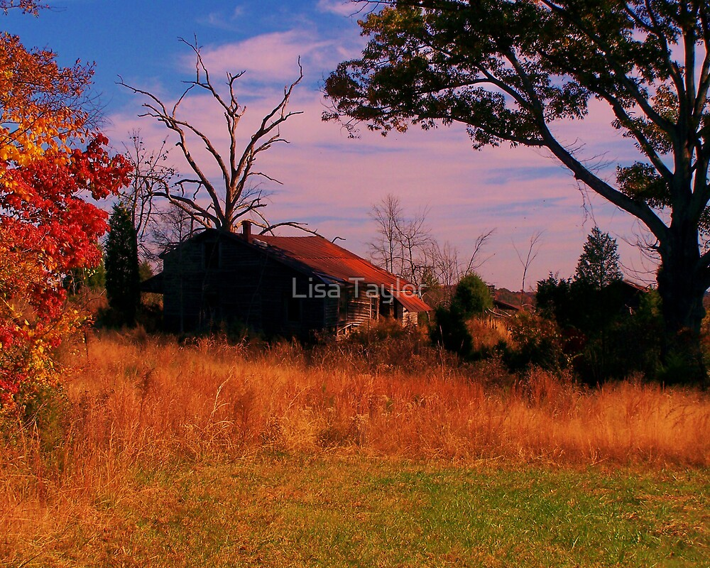 Old Country Farm House by Lisa Taylor