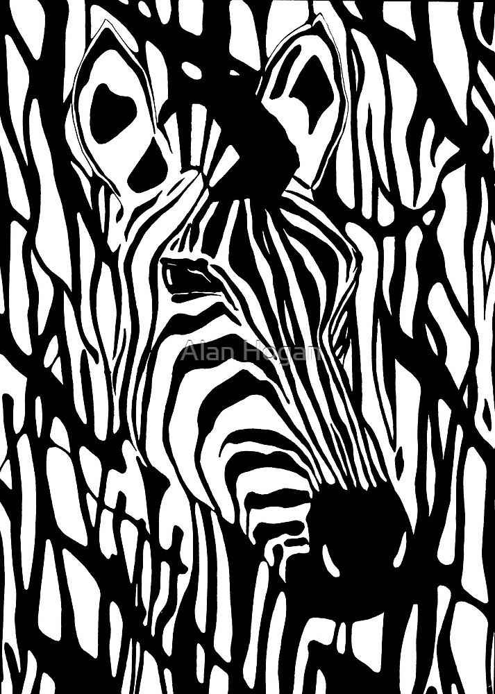 Zebra One by Alan Hogan