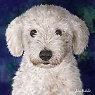 Painting of a Cute Fluffy White Maltipoo Looking at You  by ibadishi