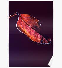 Leaf me alone! Poster
