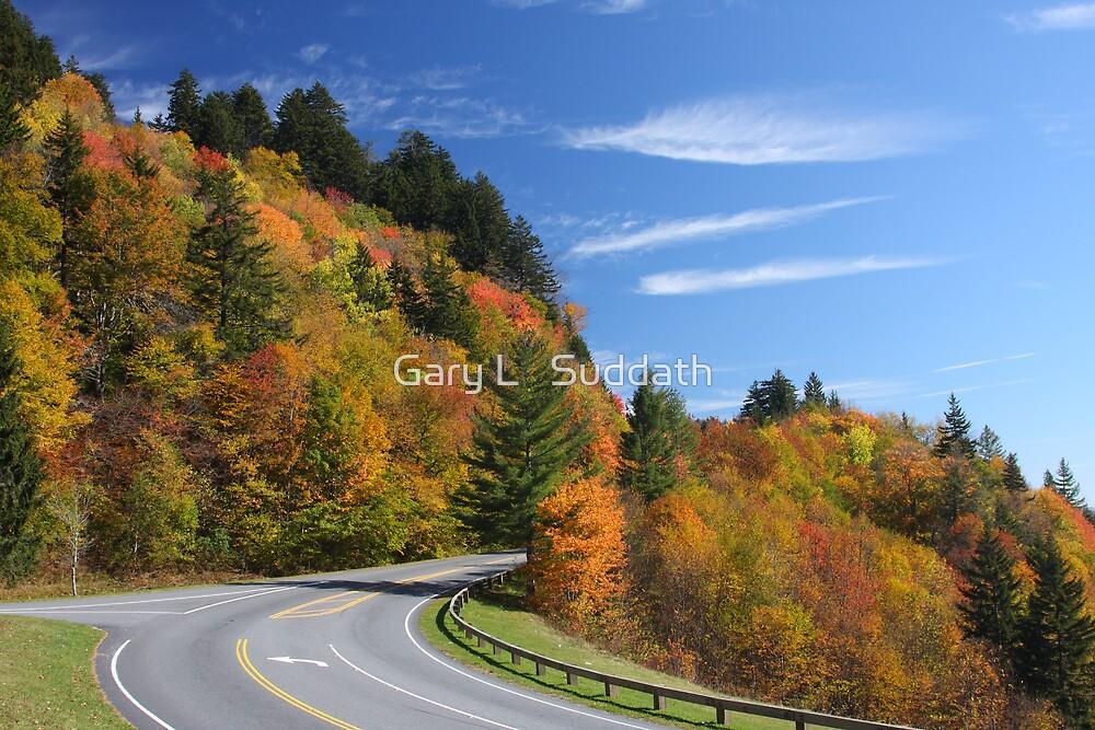 Newfound Gap Road by Gary L   Suddath