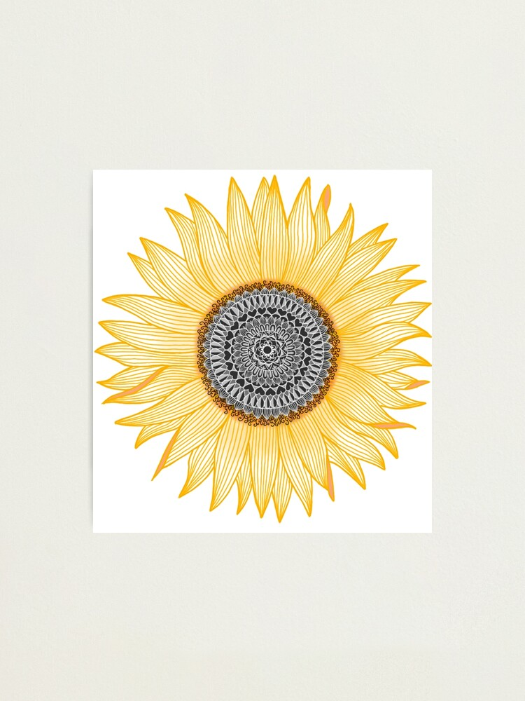 Alternate view of Golden Mandala Sunflower Photographic Print