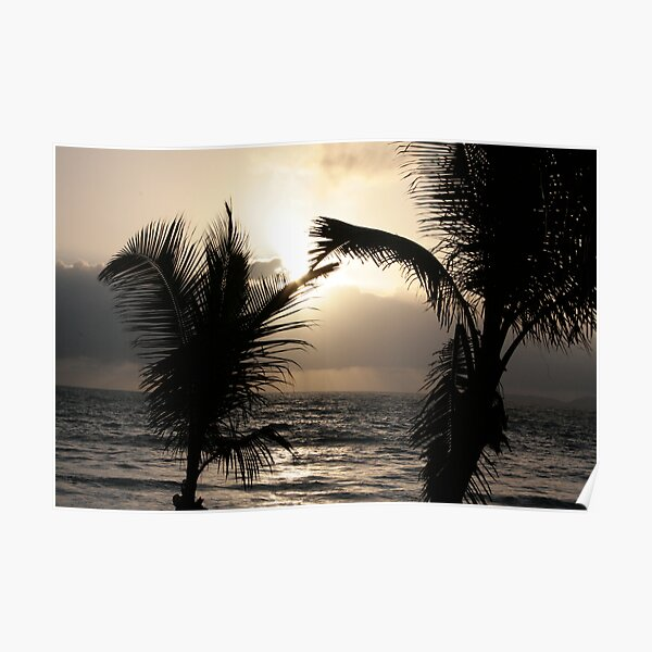 Palm Fronds Kiss at Dawn 2008 Poster