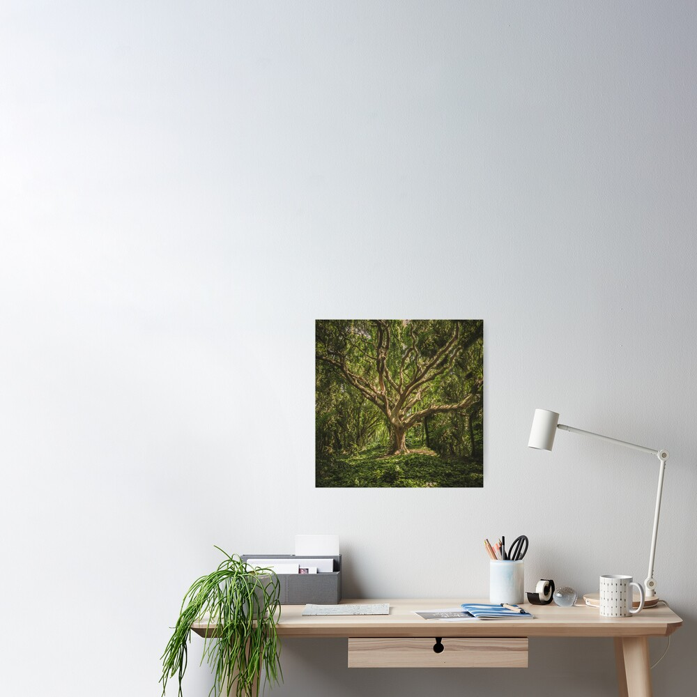 Spirits inside the wood Poster