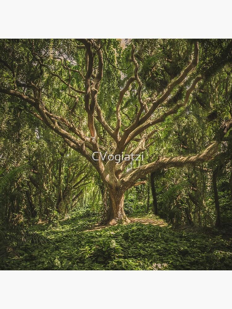 Spirits inside the wood by CVogiatzi