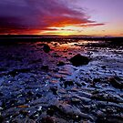 Longniddry Bents by Nik Watt