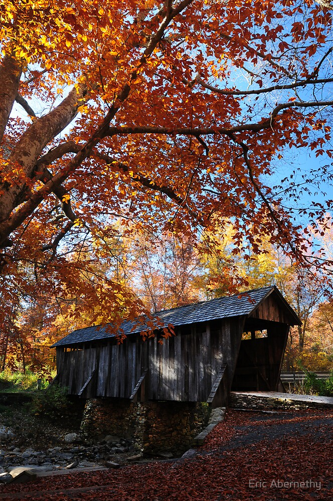 Pisgah Covered Bridge Fall 2008 by Eric Abernethy