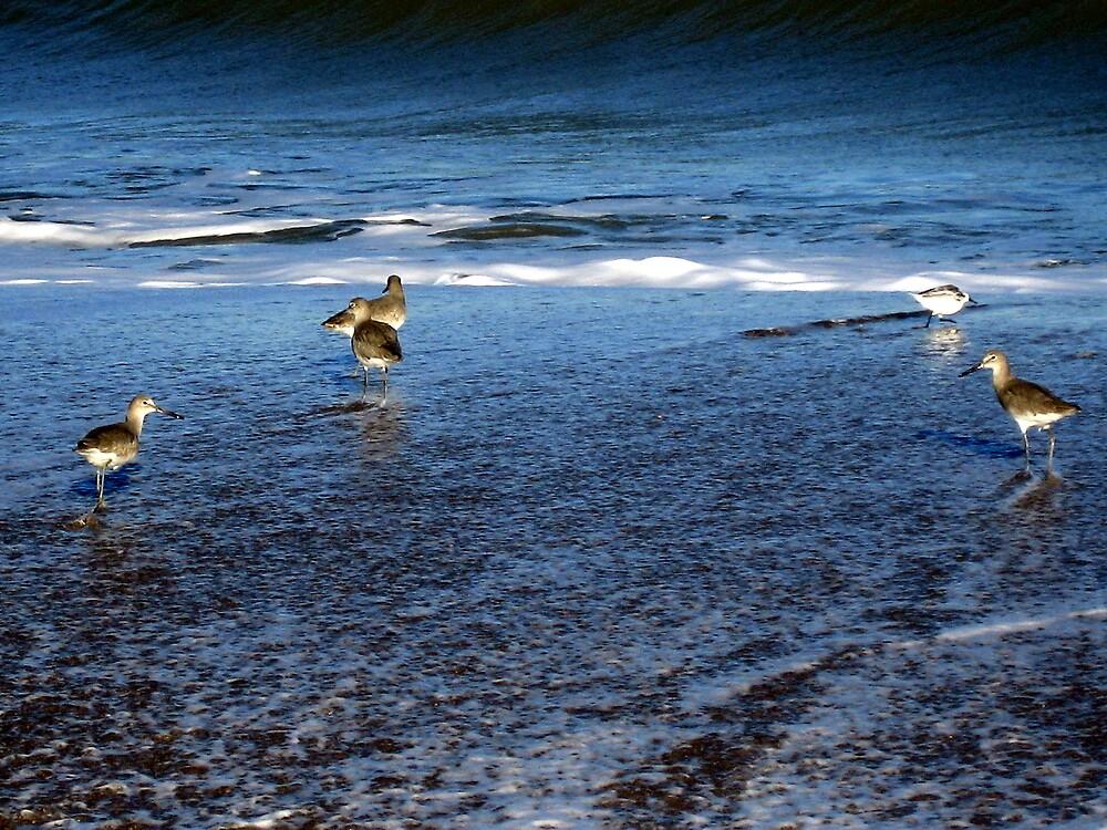 In the waves by mekea