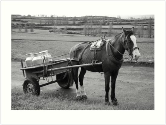 Work horse and cart by Gaspar Avila