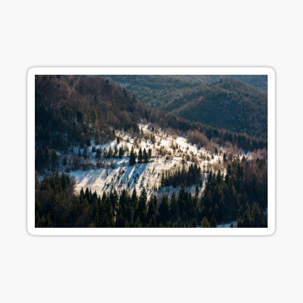 snow covered meadow among forest on hillside Sticker