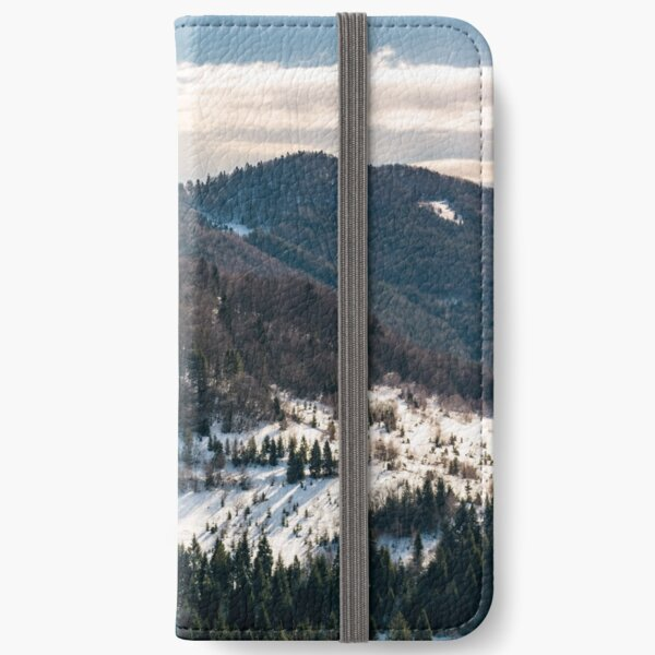 snow covered meadow among forest in mountains iPhone Wallet