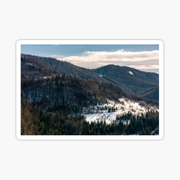 snow covered meadow among forest in mountains Sticker