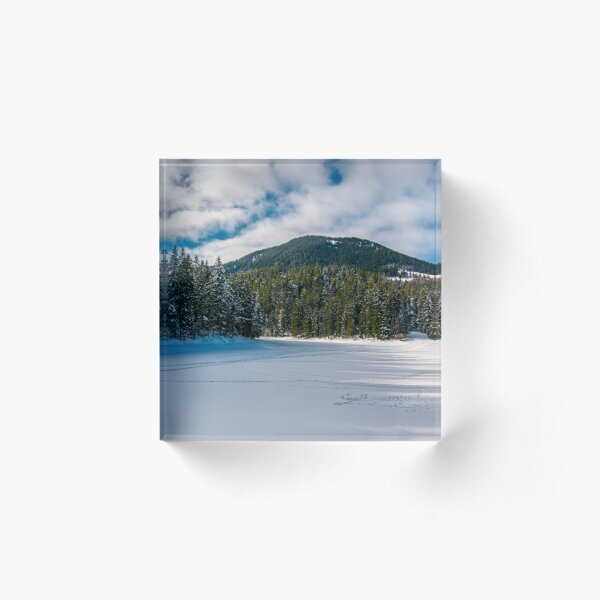 panorama of Synevyr lake in winter Acrylic Block