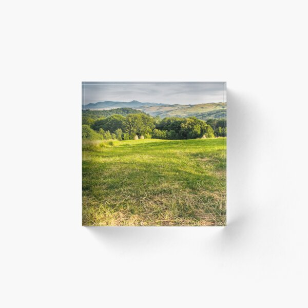grassy rural field in mountains Acrylic Block