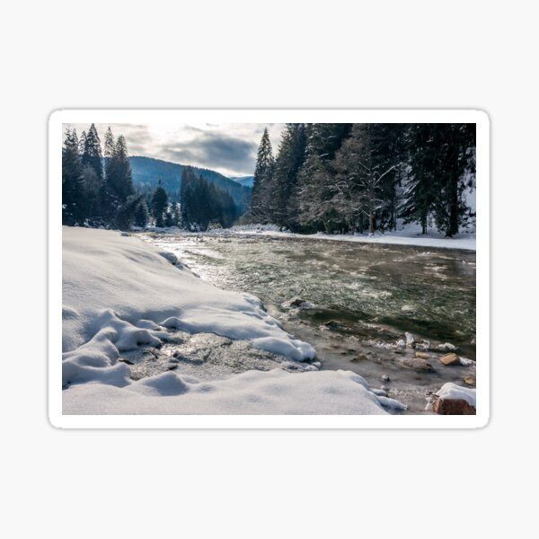 cold flow of forest river in snowy spruce forest Sticker