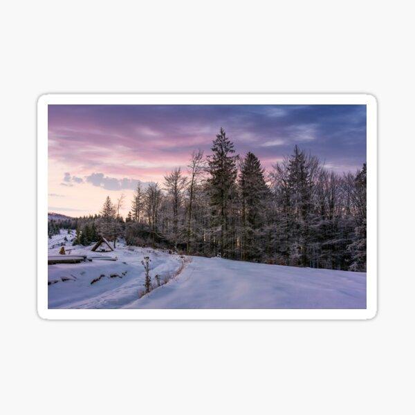 forest in hoarfrost on snowy hillside at dawn Sticker