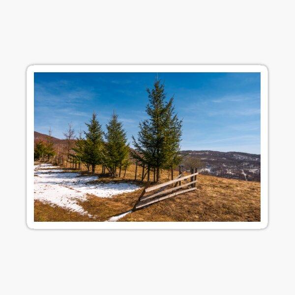 spruce trees near the fence on hillside Sticker