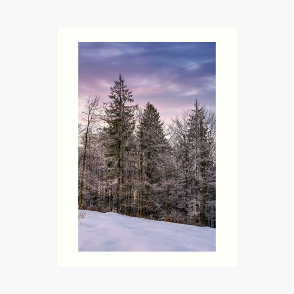 forest in hoarfrost on snowy hillside at dawn Art Print
