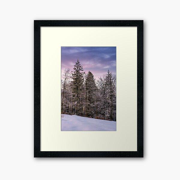 forest in hoarfrost on snowy hillside at dawn Framed Art Print