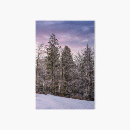 forest in hoarfrost on snowy hillside at dawn Art Board Print