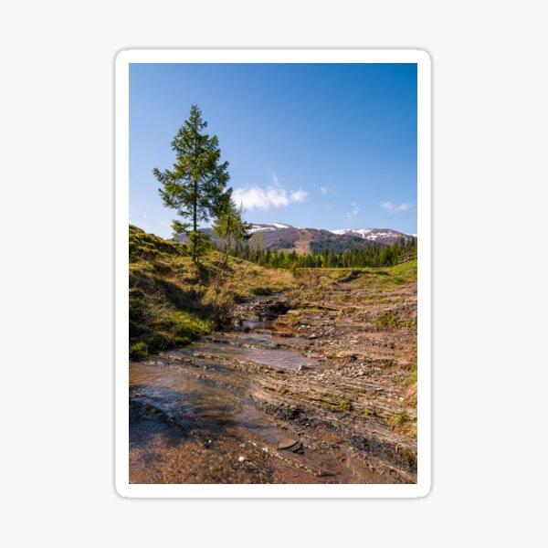 Carpathian alpine countryside in springtime Sticker