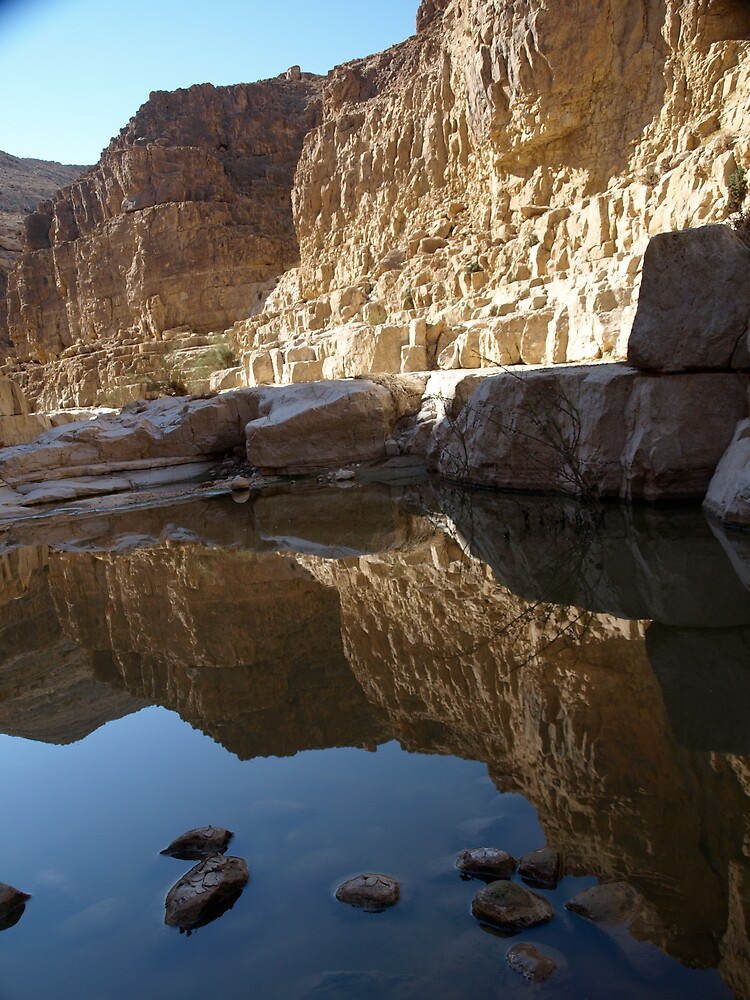 Water in the desert by MichaelBr