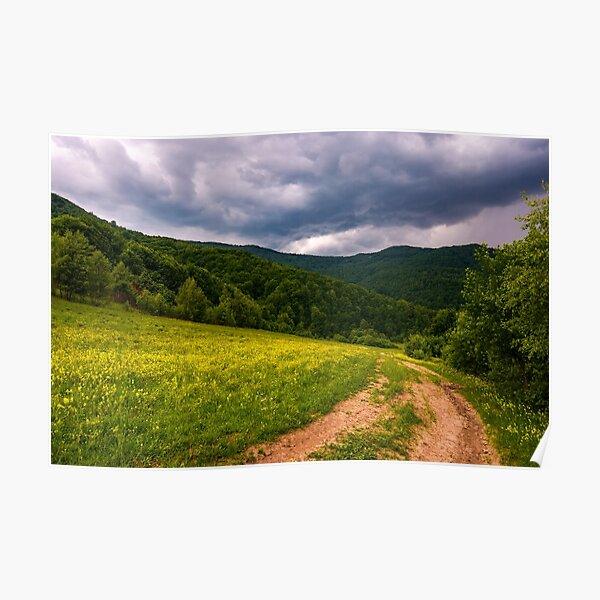 grassy field on hillside in stormy weather Poster