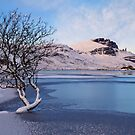 Old man of Storr and Loch Fhada in Winter. Isle of Skye, Scotland. by PhotosEcosse