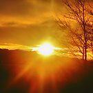 Gorgeous Sunrise by beckytide