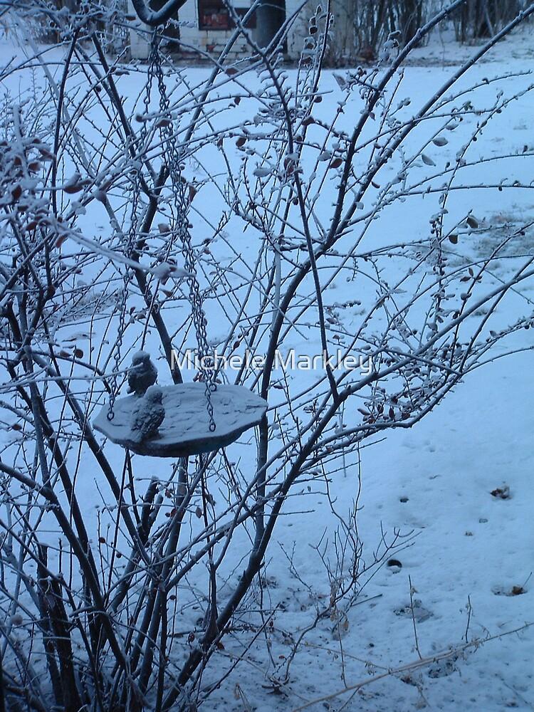 Frozen by Michele Markley