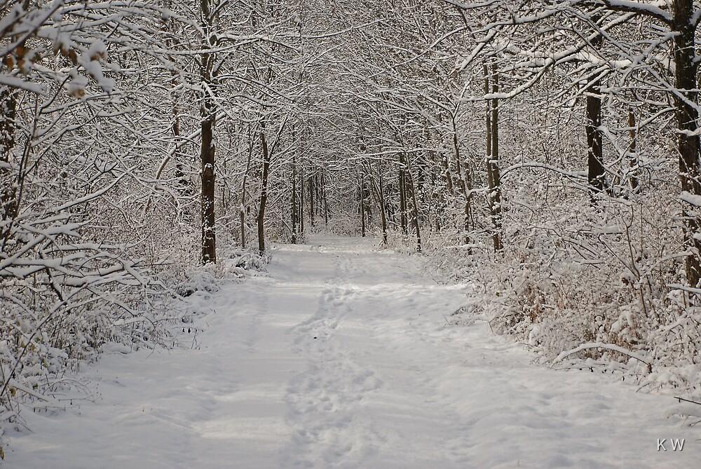 Winter Wonderland by K W