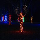 Christmas Garden 8 by Rodney Lee Williams