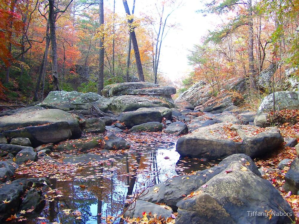 Fall Reflections II by Tiffany  Nabors