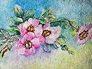 Cherry Blossoms  by FrankieCat