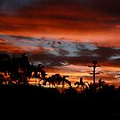 Townsville Sunset 95 by The Mattmosphere