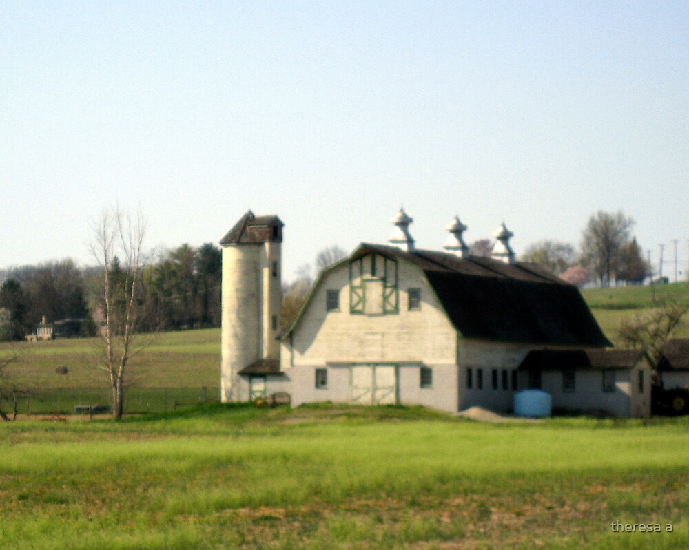 OLD AND YELLOWED BARN by theresa a