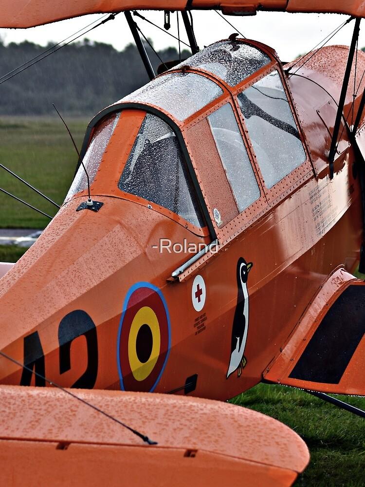 Flugzeug von -Roland
