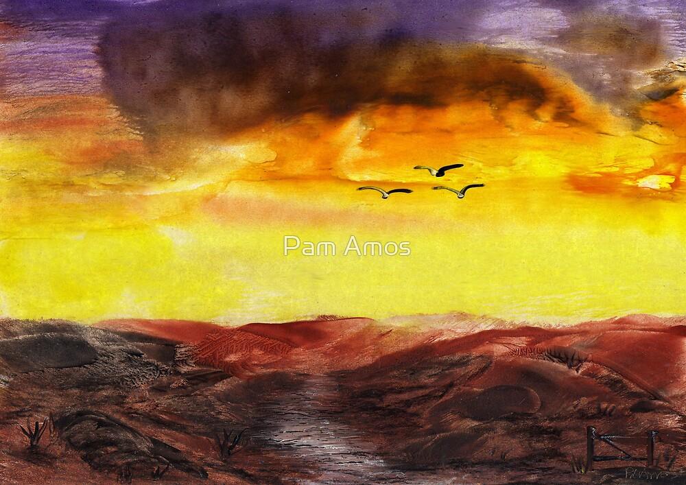 Rain's Coming by Pam Amos