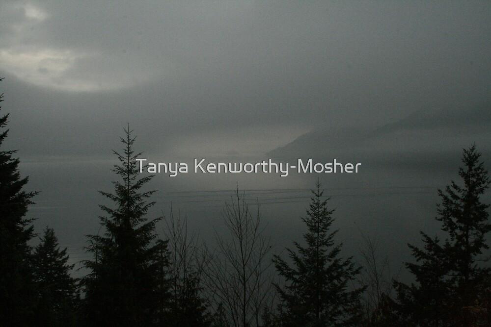 Fog On The Ocean by Tanya Kenworthy-Mosher