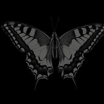 Swallowtail butterfly dark monochrome by dilettante