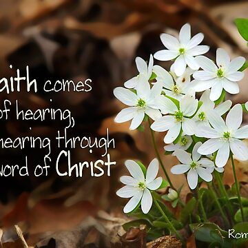 Faith by Hearing the Word of Christ ~ Romans 10:17 by robinclifton