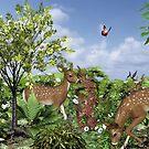 Deer In Woods by Barbara A. Boal