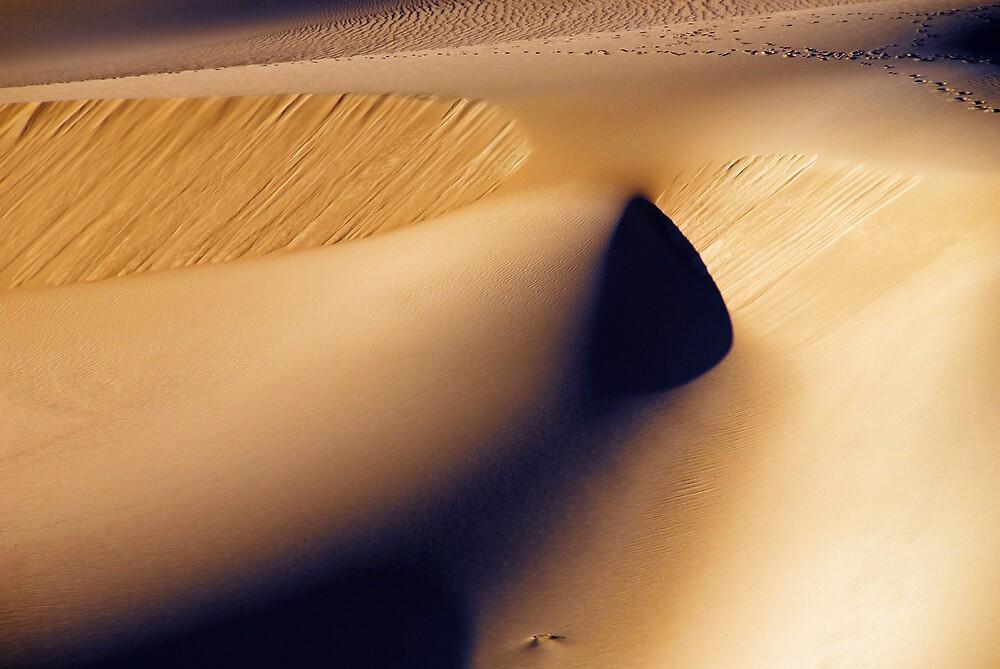 death valley dunes II by Rachel  McKinnie