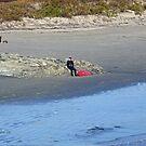 Autumn in Rhode Island   Ocean Views - Surfer Resting by Jack McCabe