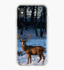 Stag in the snow iPhone Case