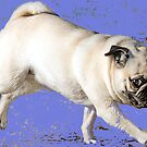 When Pugs Fly-Transparency by Susan Werby
