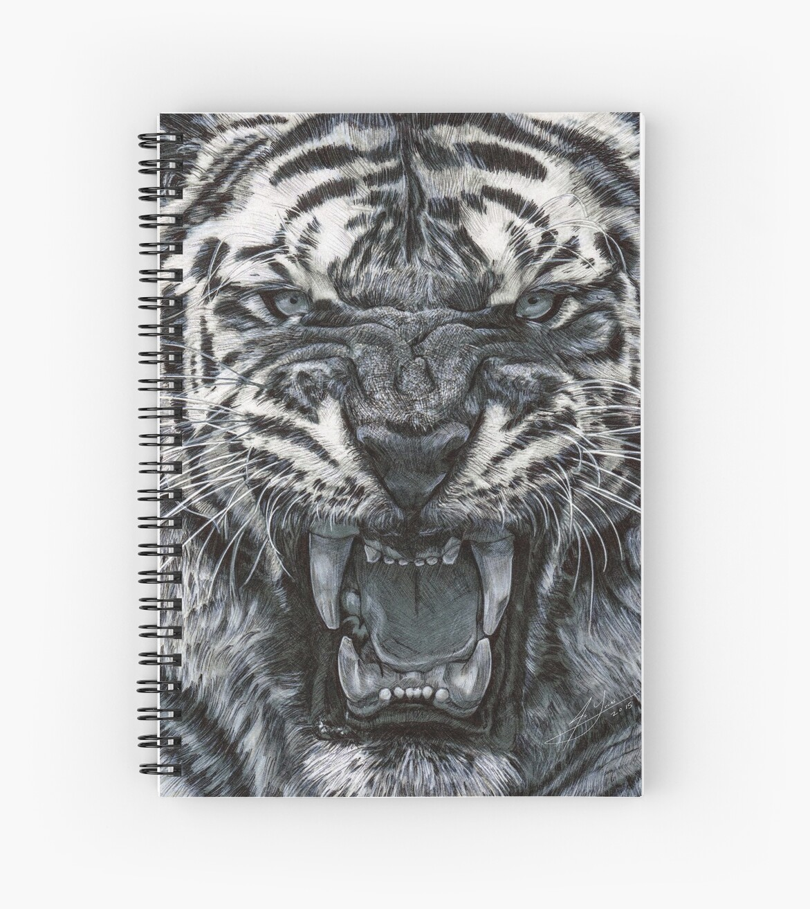 Tiger growl graphite pencil drawing