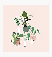Plant Party Photographic Print