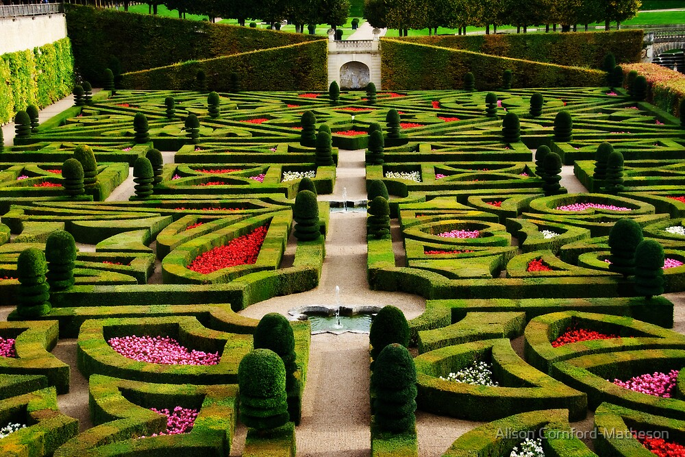 Jardin d'Amour - Villandry by Alison Cornford-Matheson