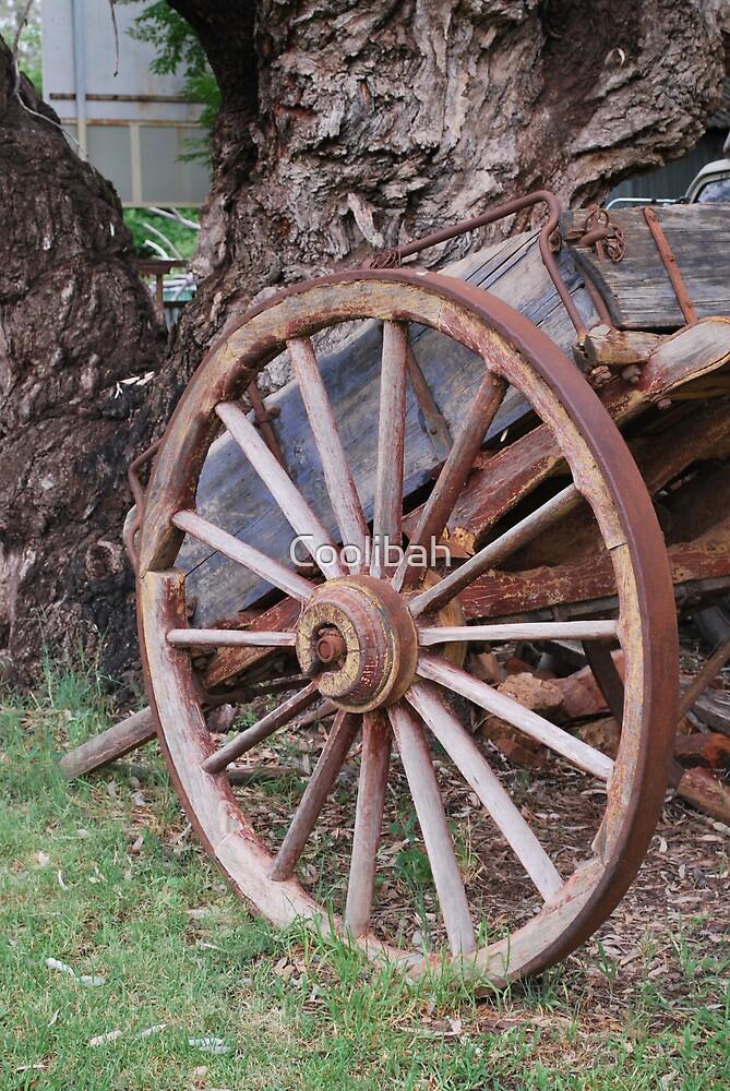 Sulky Wheel by Ruth Anne  Stevens